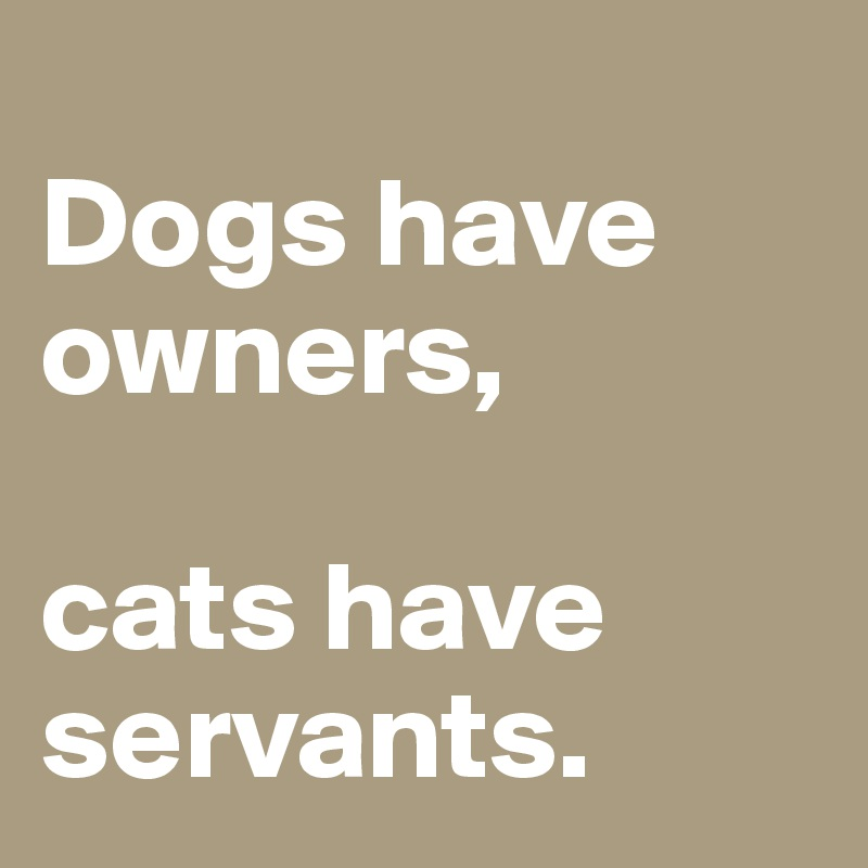 Dogs have owners,   cats have servants.