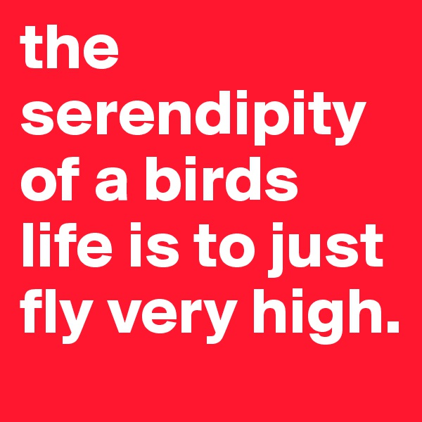 the serendipity of a birds life is to just fly very high.