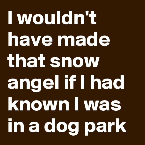 I wouldn't have made that snow angel if I had known I was in a dog park