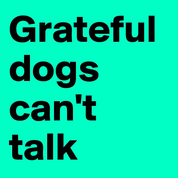 Grateful dogs can't talk
