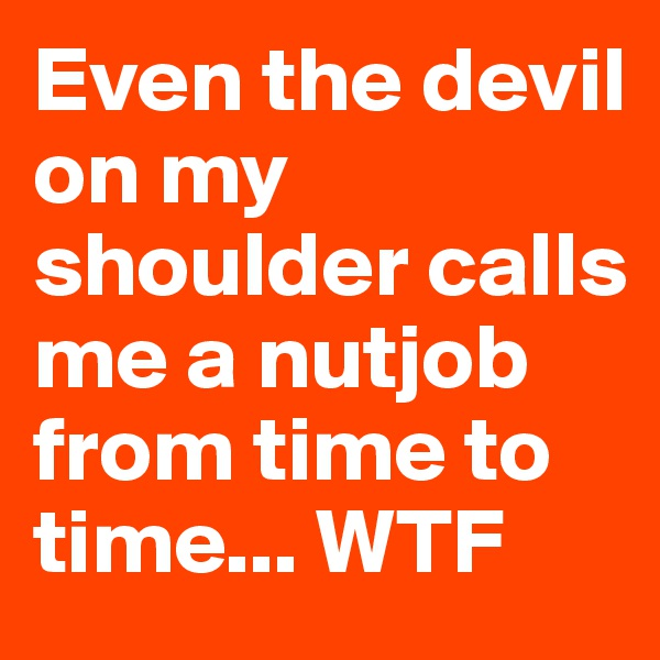 Even the devil on my shoulder calls me a nutjob from time to time... WTF