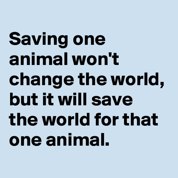 Saving one animal won't change the world, but it will save the world for that one animal.