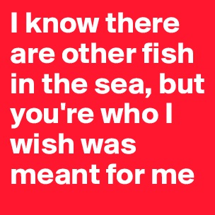 I wish that i could wake up with amnesia and forget about for Other fish in the sea