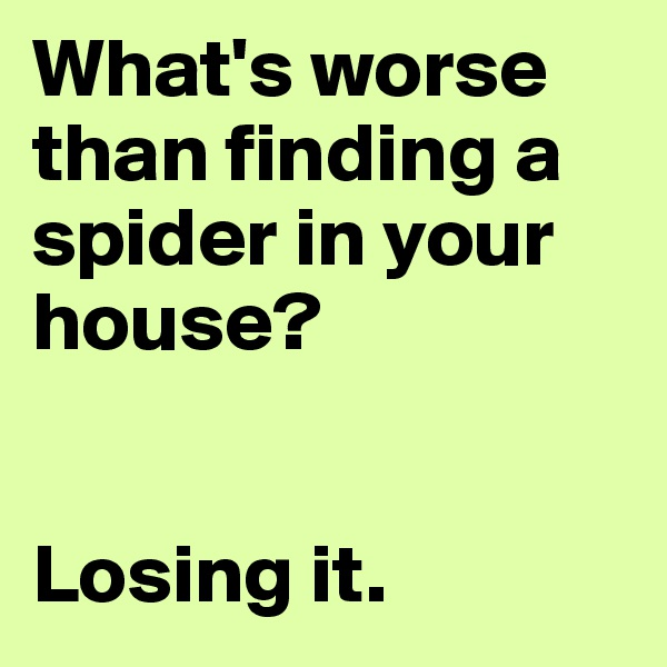 What's worse than finding a spider in your house?   Losing it.