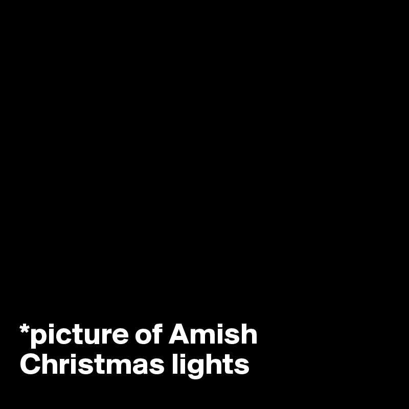 *picture of Amish Christmas lights