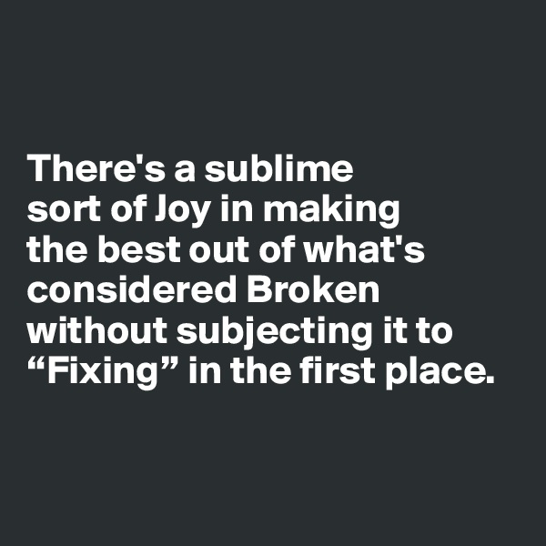 "There's a sublime  sort of Joy in making  the best out of what's considered Broken without subjecting it to ""Fixing"" in the first place."