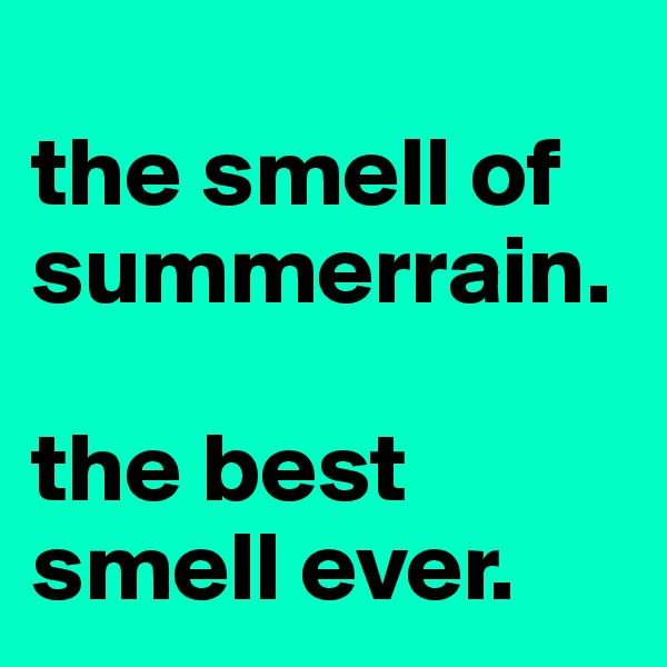 the smell of summerrain.  the best smell ever.