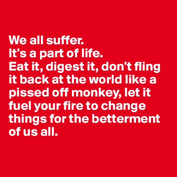We all suffer.  It's a part of life.  Eat it, digest it, don't fling it back at the world like a pissed off monkey, let it fuel your fire to change things for the betterment of us all.