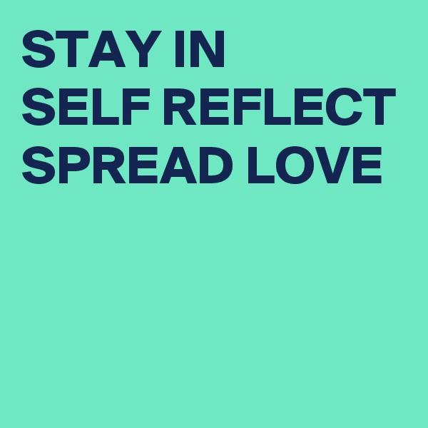 STAY IN  SELF REFLECT SPREAD LOVE
