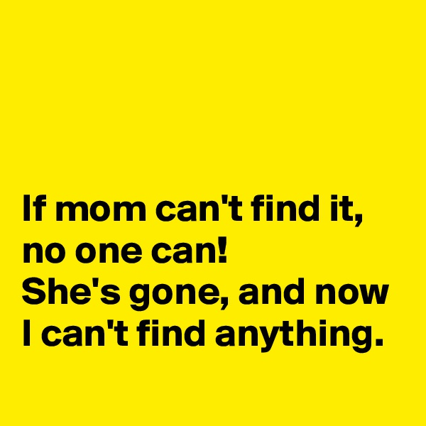 If mom can't find it, no one can!  She's gone, and now I can't find anything.