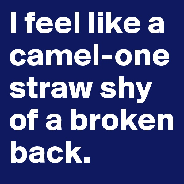 I feel like a camel-one straw shy of a broken back.