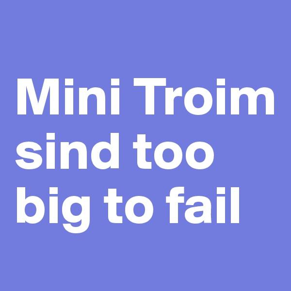 Mini Troim sind too big to fail