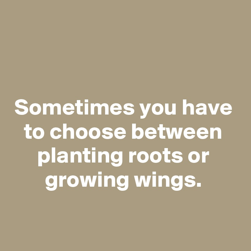 Sometimes you have to choose between planting roots or growing wings.