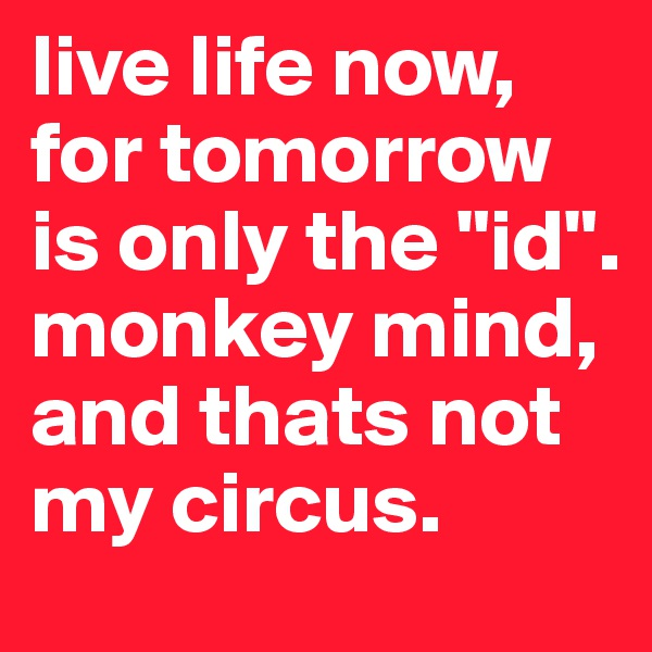 """live life now, for tomorrow is only the """"id"""". monkey mind, and thats not my circus."""