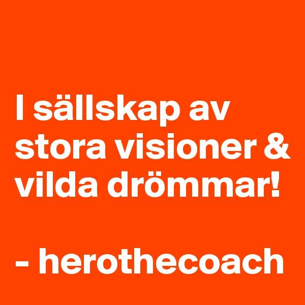 I sällskap av stora visioner & vilda drömmar!  - herothecoach