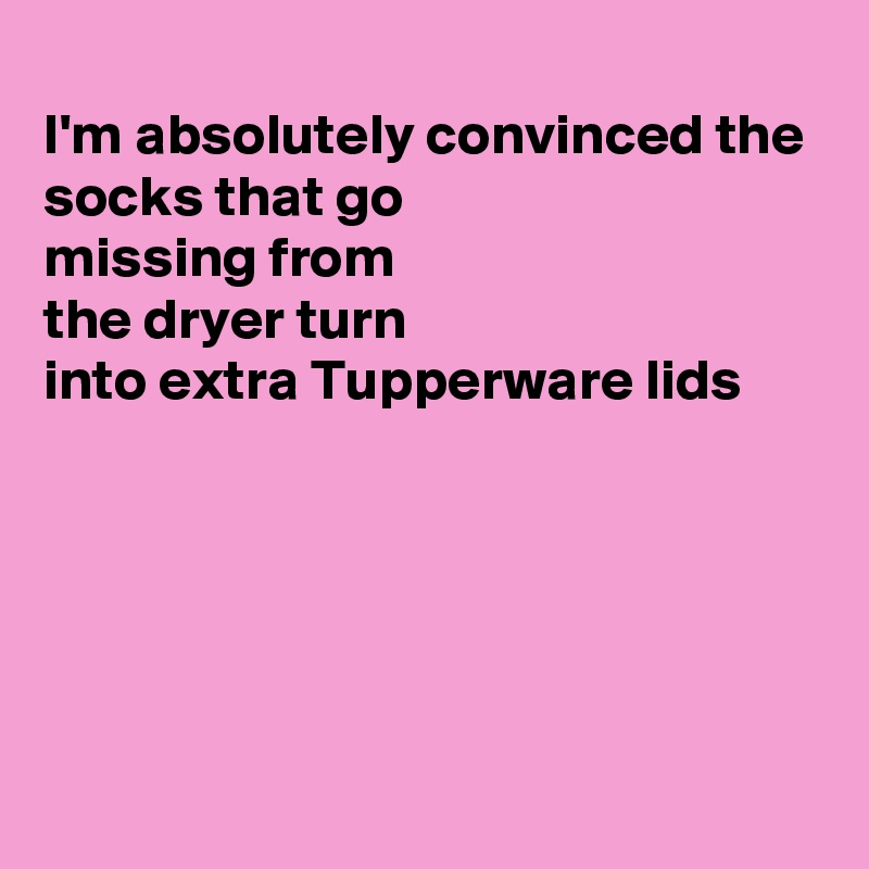 I'm absolutely convinced the socks that go missing from the dryer turn into extra Tupperware lids