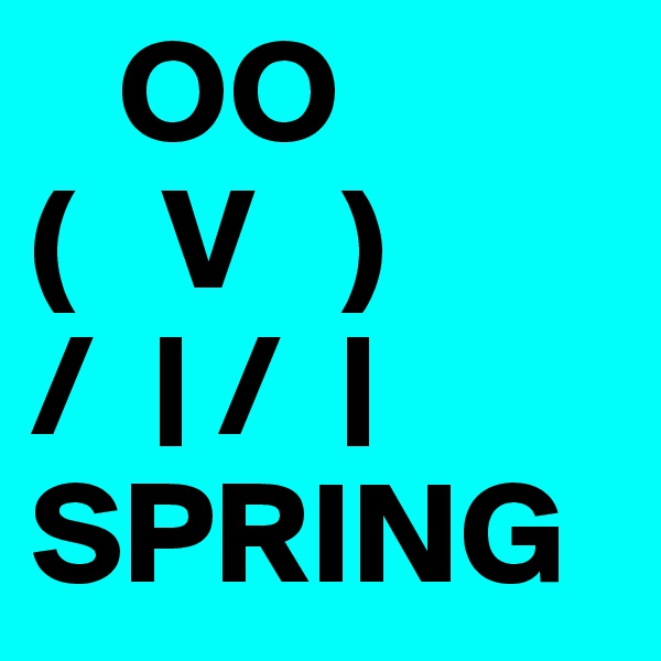OO                          (   V   )        /    /                             SPRING