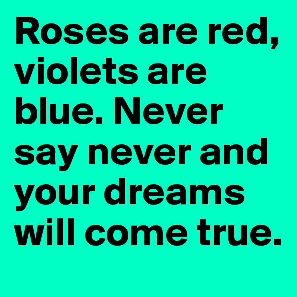 Roses are red, violets are blue. Never say never and your dreams will come true.
