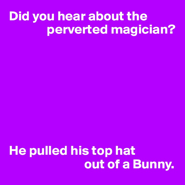 Did you hear about the                perverted magician?         He pulled his top hat                             out of a Bunny.