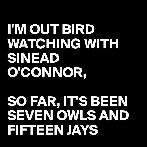 I'M OUT BIRD WATCHING WITH  SINEAD O'CONNOR,  SO FAR, IT'S BEEN SEVEN OWLS AND FIFTEEN JAYS