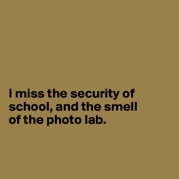 I miss the security of school, and the smell  of the photo lab.