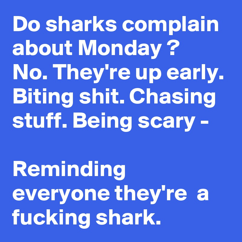 Do sharks complain about Monday ? No. They're up early. Biting shit. Chasing stuff. Being scary -  Reminding everyone they're  a fucking shark.