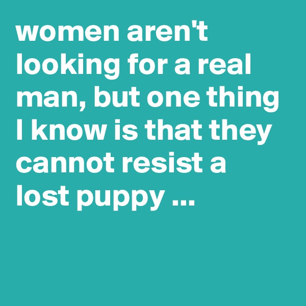 women aren't looking for a real man, but one thing I know is that they cannot resist a lost puppy ...