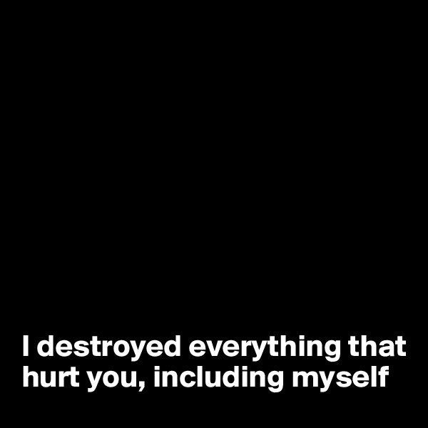 I destroyed everything that hurt you, including myself