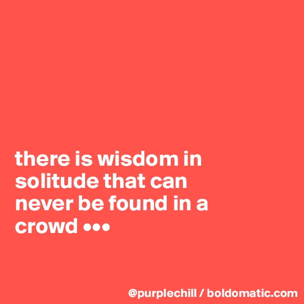 there is wisdom in  solitude that can  never be found in a  crowd •••