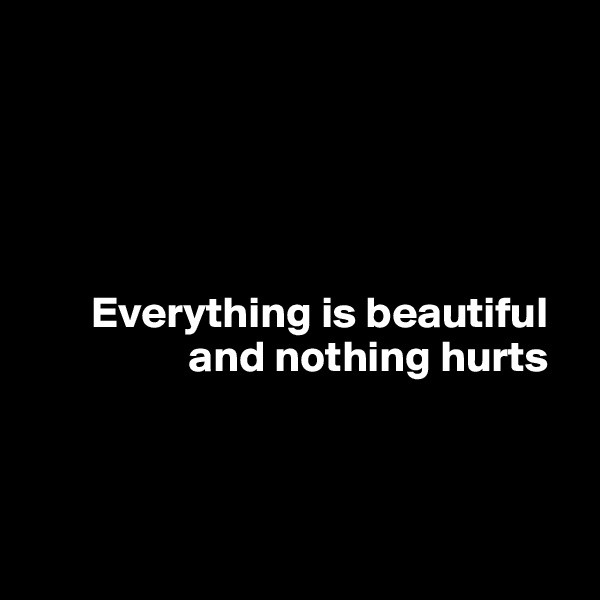 Everything is beautiful                   and nothing hurts