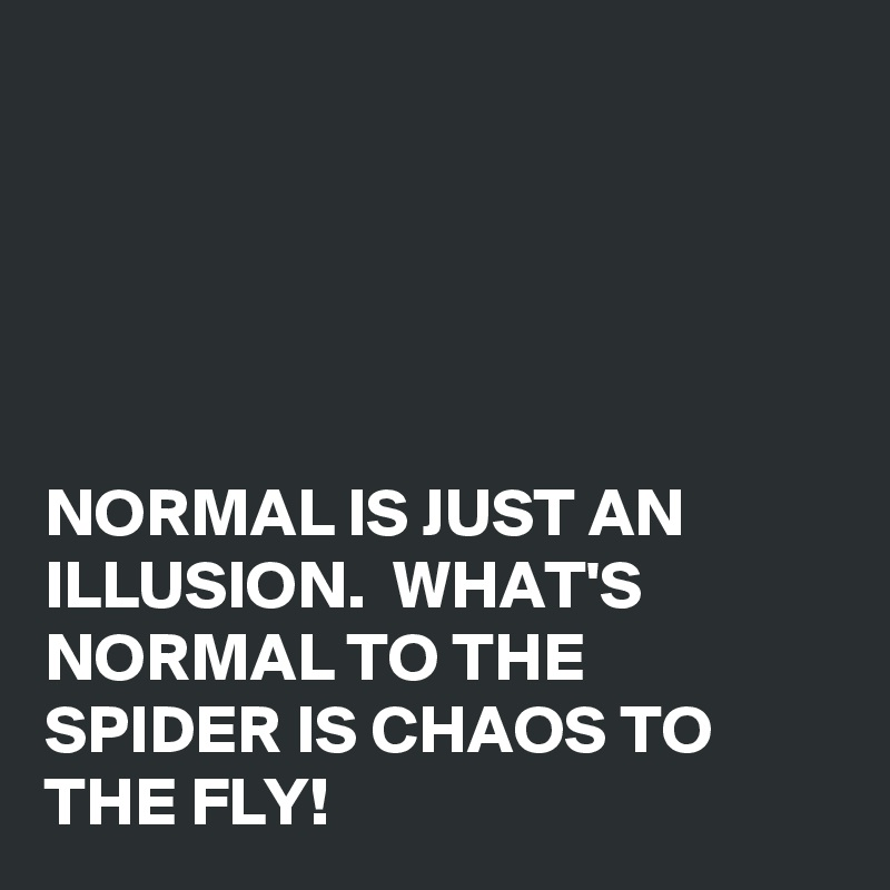 Normal is just an illusion whats normal to the spider is chaos to normal is just an illusion whats normal to the spider is chaos to the fly altavistaventures Choice Image