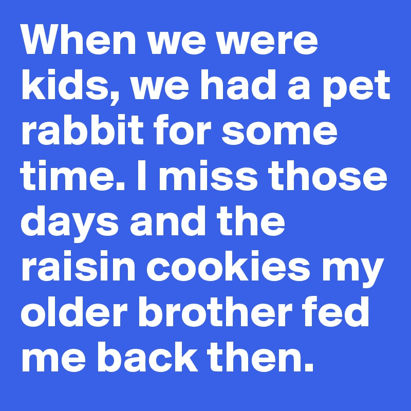When we were kids, we had a pet rabbit for some time. I miss those days and the raisin cookies my older brother fed me back then.
