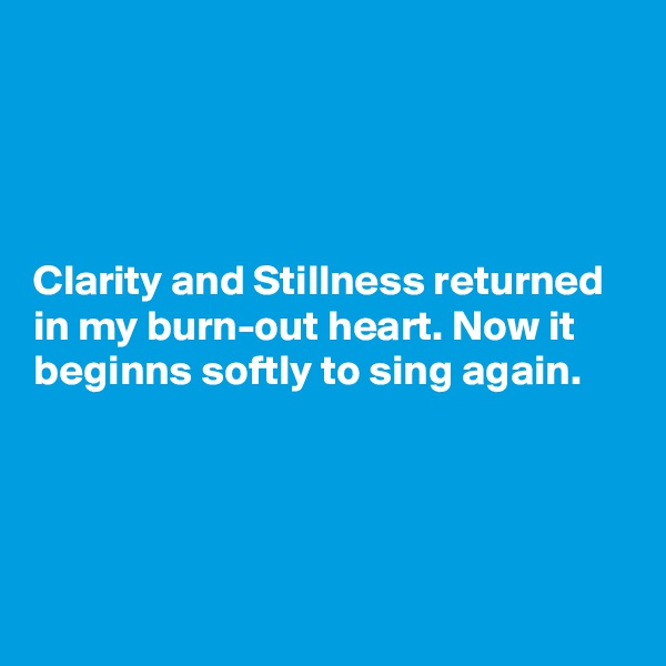 Clarity and Stillness returned in my burn-out heart. Now it beginns softly to sing again.
