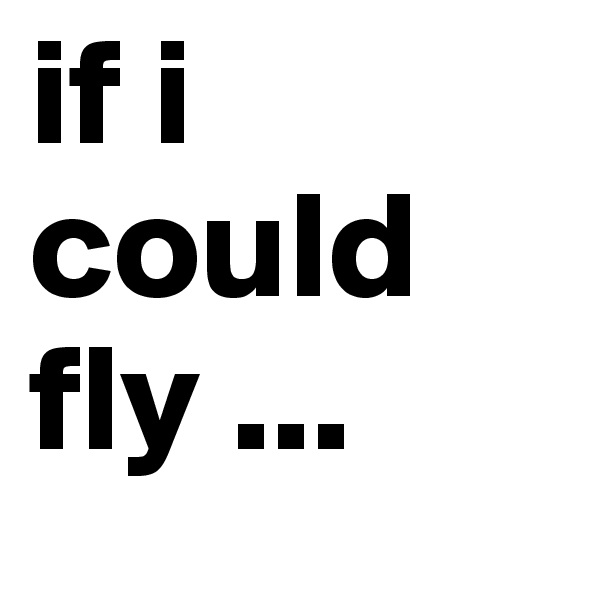 if i could fly ...