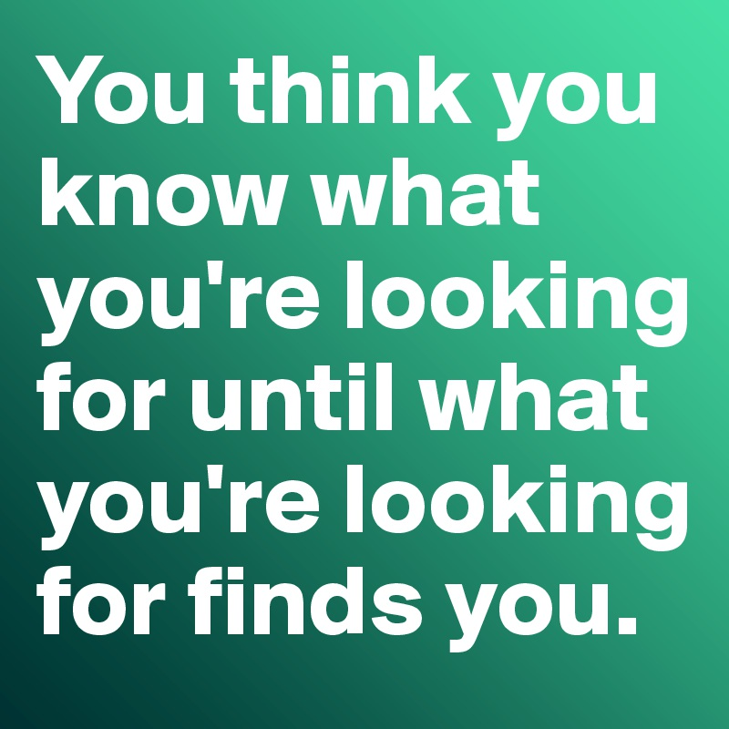 You think you know what you're looking for until what you're looking for finds you.