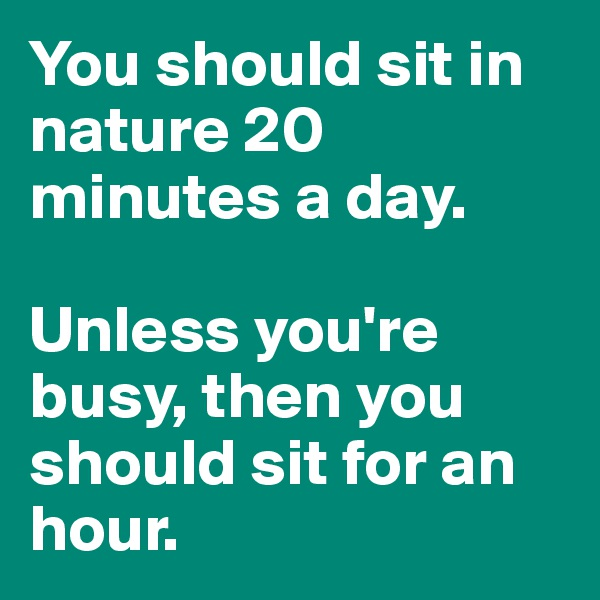 You should sit in nature 20 minutes a day.   Unless you're busy, then you should sit for an hour.