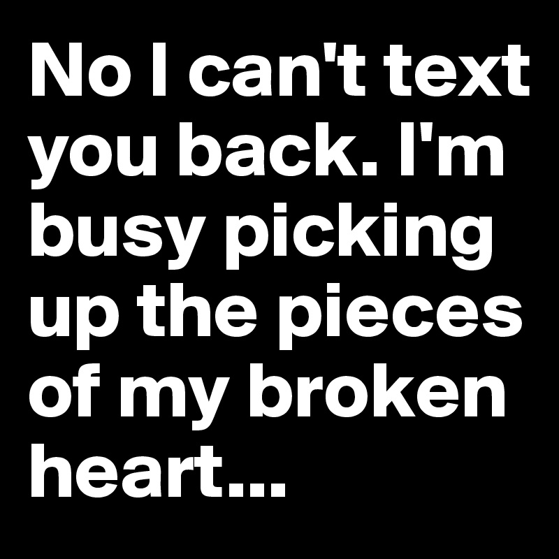 No I can't text you back. I'm busy picking up the pieces of my broken heart...