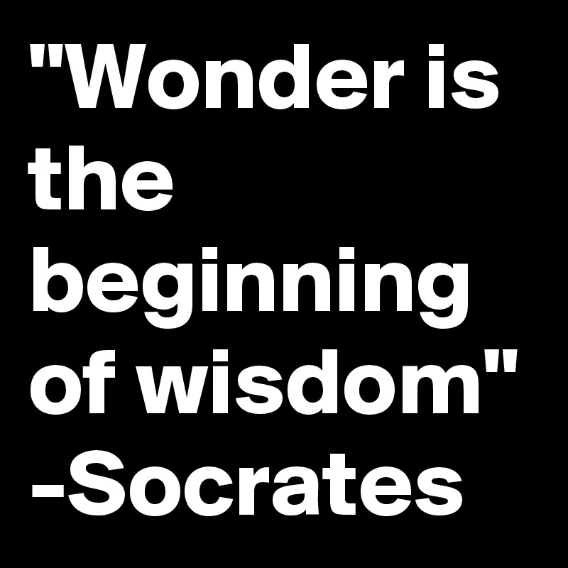 """Wonder is the beginning of wisdom"" -Socrates"
