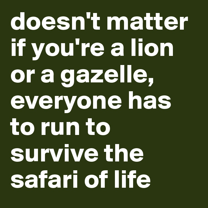 doesn't matter if you're a lion or a gazelle, everyone has to run to survive the safari of life