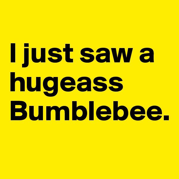 I just saw a hugeass Bumblebee.