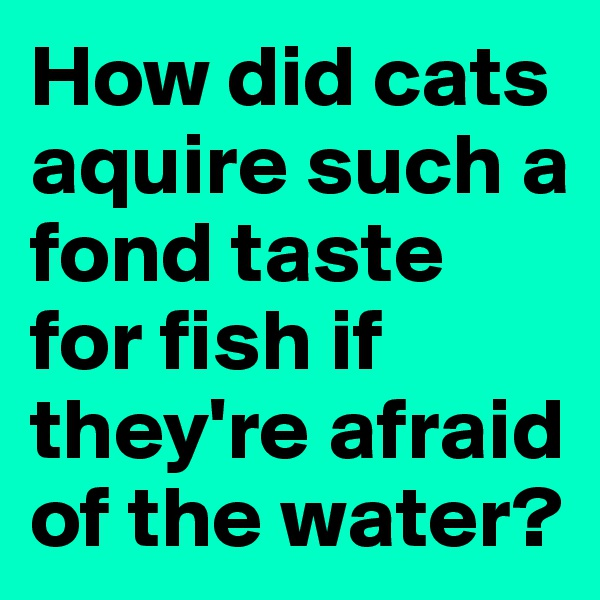 How did cats aquire such a fond taste for fish if they're afraid of the water?