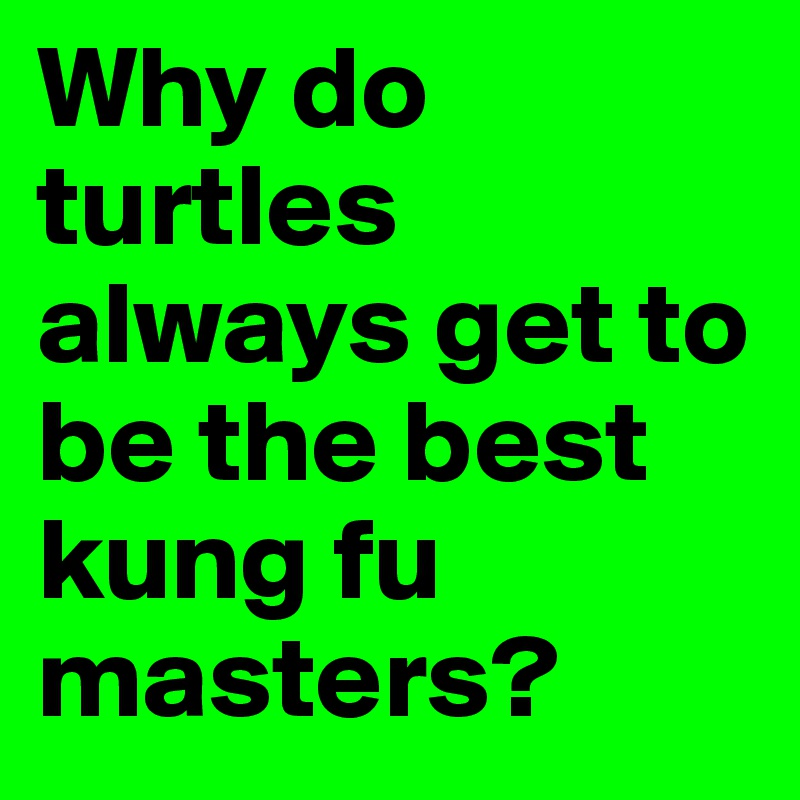 Why do turtles always get to be the best kung fu masters?