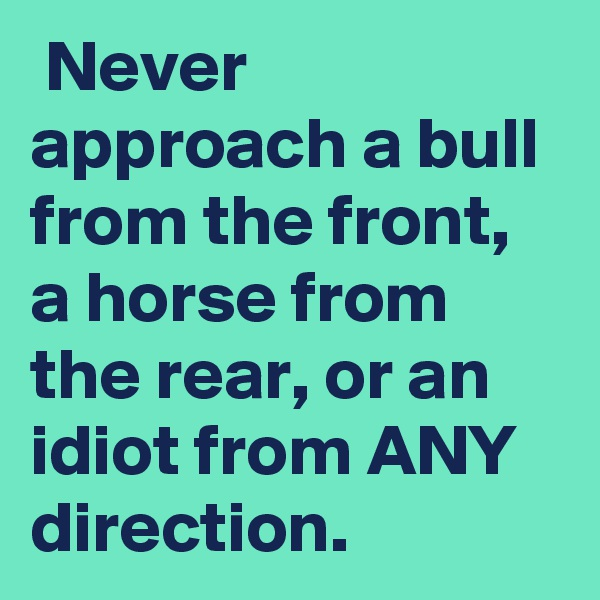 Never approach a bull from the front, a horse from the rear, or an idiot from ANY direction.