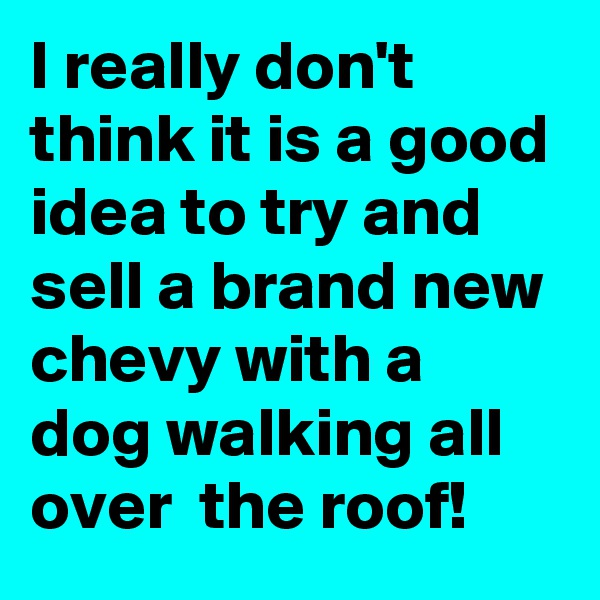 I really don't think it is a good idea to try and sell a brand new chevy with a dog walking all over  the roof!
