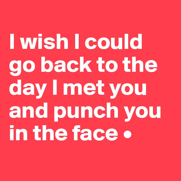 I wish I could go back to the day I met you and punch you in the face •