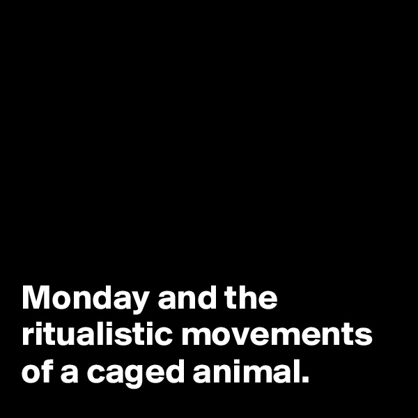 Monday and the ritualistic movements of a caged animal.