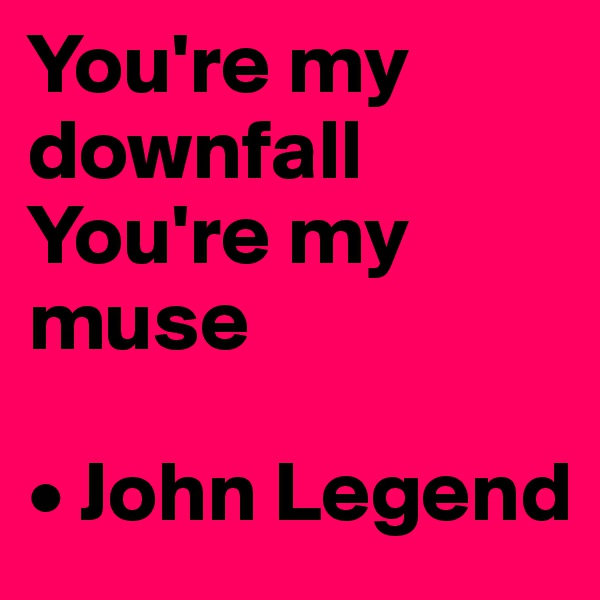 You're my downfall You're my muse  • John Legend