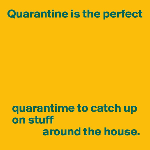 Quarantine is the perfect          quarantime to catch up    on stuff                around the house.