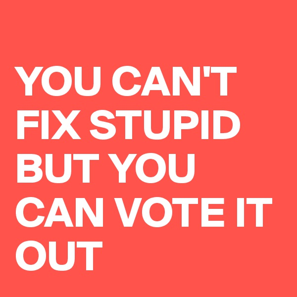 YOU CAN'T FIX STUPID BUT YOU CAN VOTE IT OUT