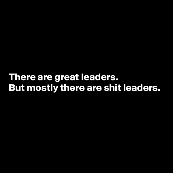 There are great leaders. But mostly there are shit leaders.